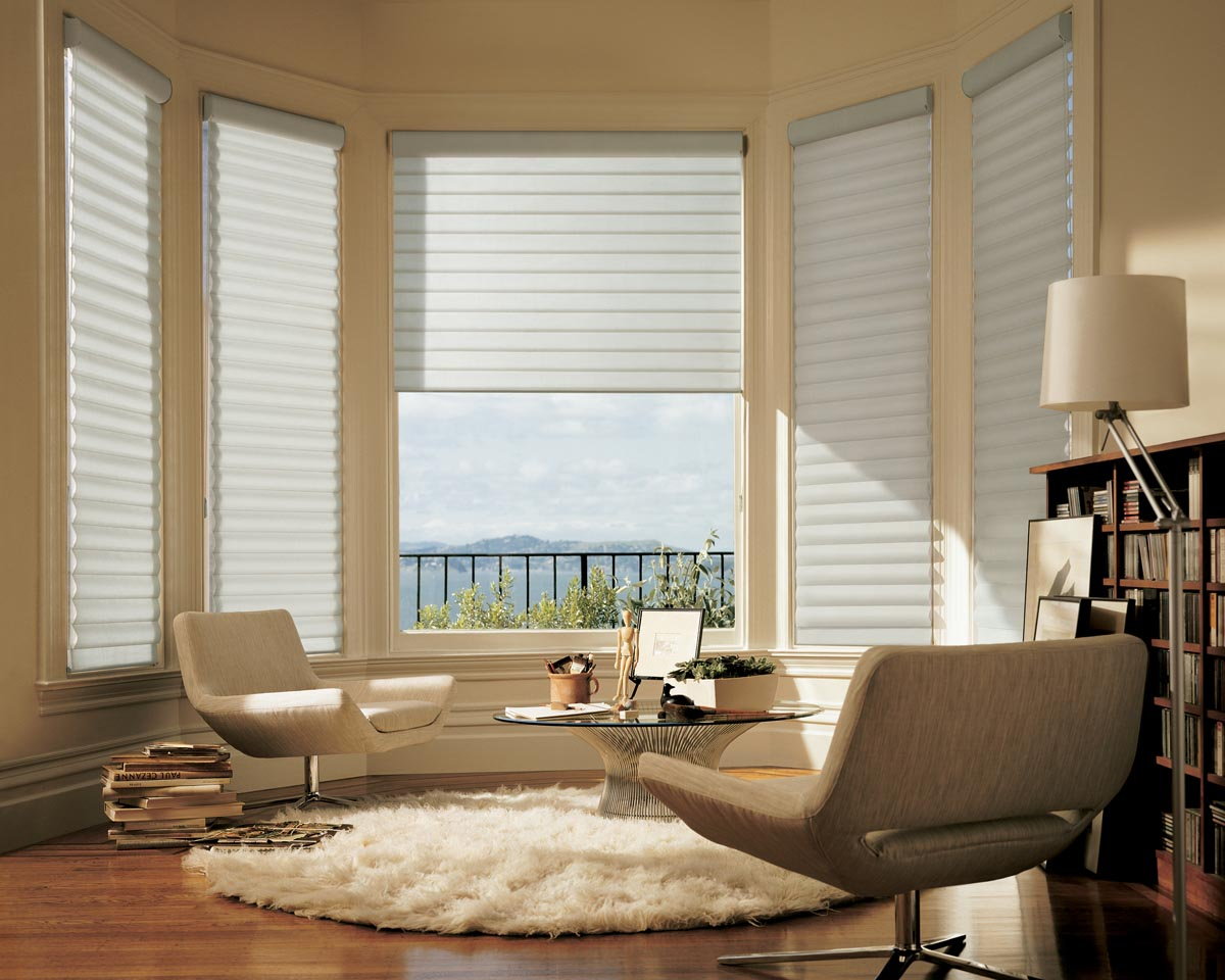 Bay Window Treatments Ideas