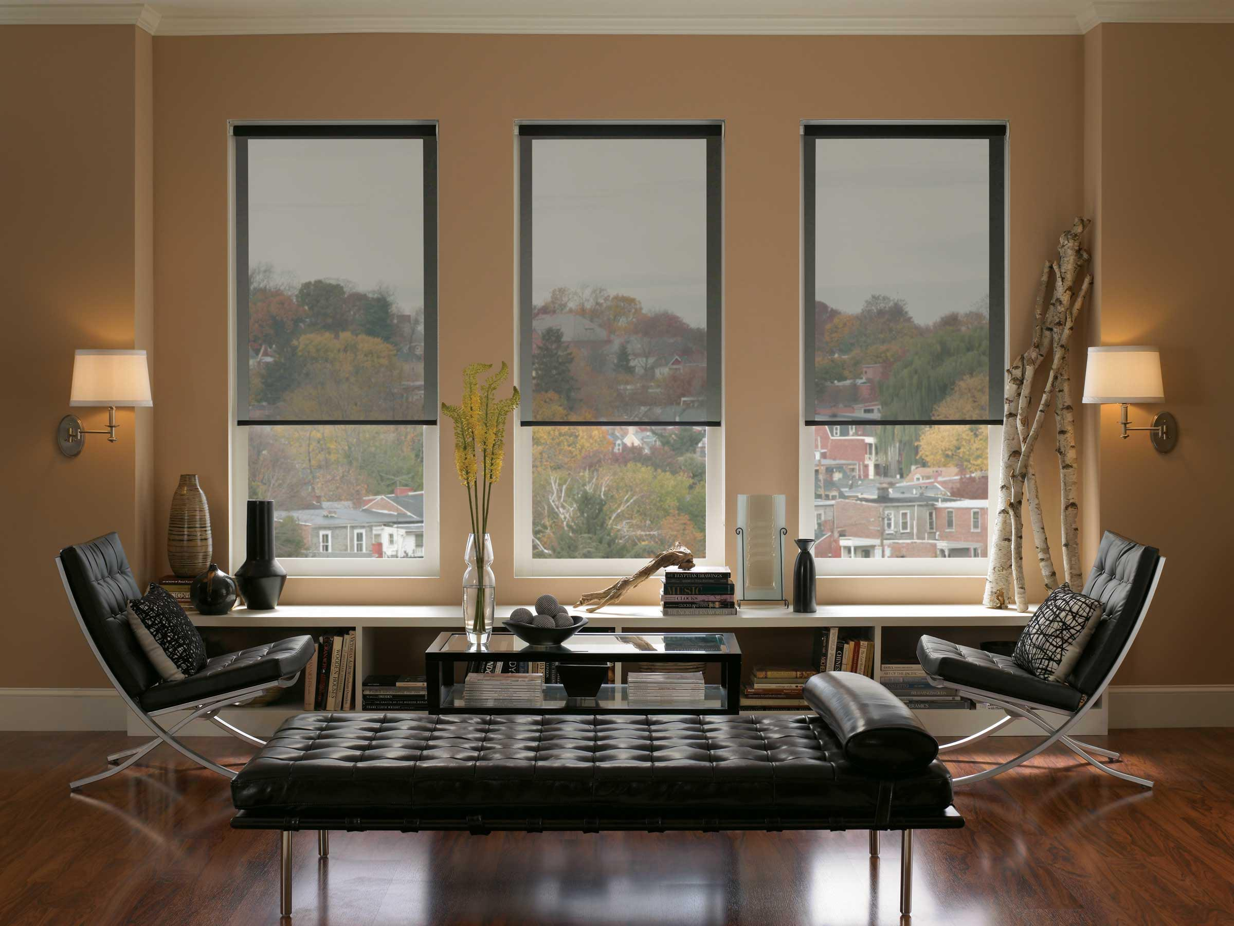 Blackout blinds for large windows window treatments for Window blinds with designs