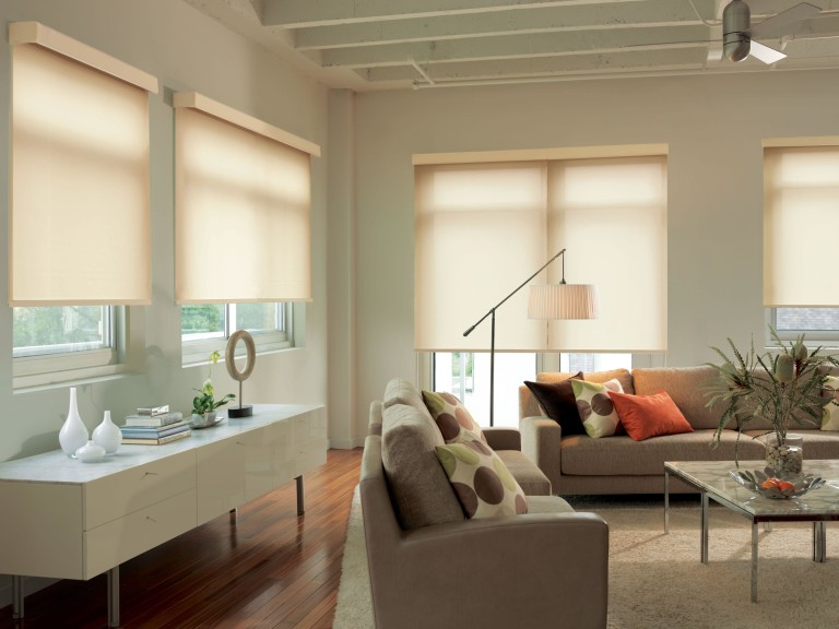 Levolor Cordless Window Blinds