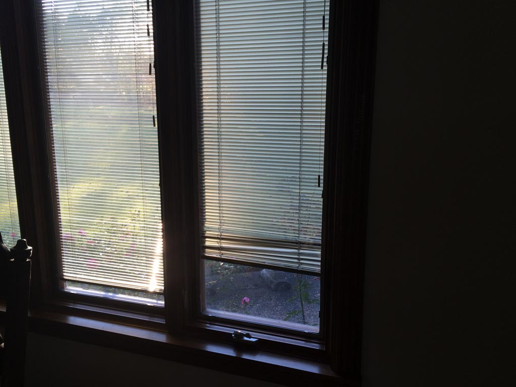Pella bay windows with built in blinds window treatments for Window blinds with designs