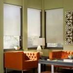 Rice Paper Window Shade